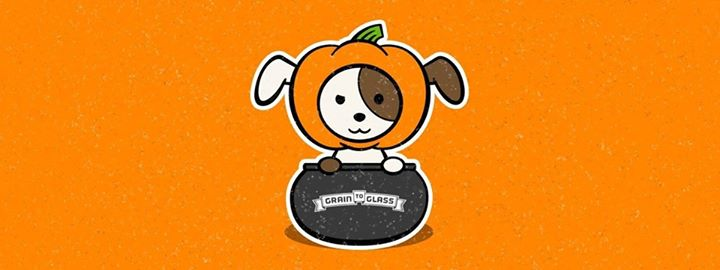 Pumpkins for Paws